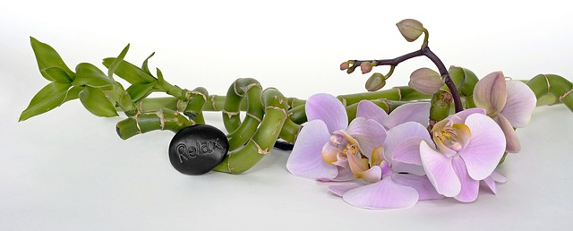 orchidej pro relax